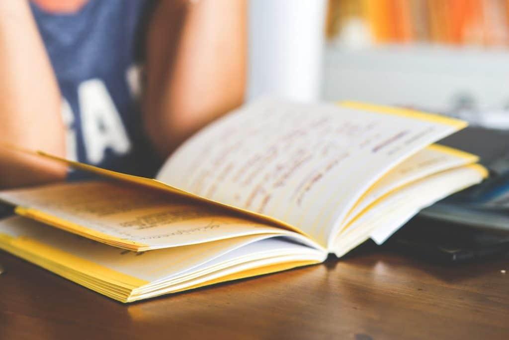 Cuidados com a agenda escolar na educação infantil.