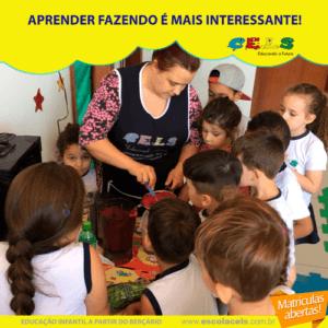 Educação Infantil palhoça cels