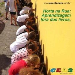 Horta na rua é mais um projeto do CELS em Palhoça